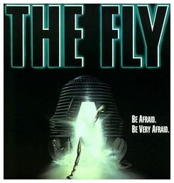 theflyborder